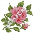 Скачать бесплатную схему вышивки крестом «Розовая роза»
