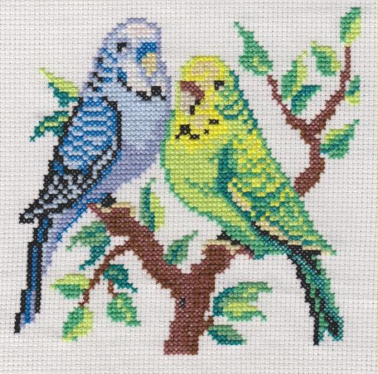 Вышивка крестом волнистые попугайчики 31